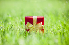 Present on grassy background Royalty Free Stock Photos