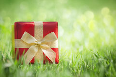 Present on grassy background Stock Photo