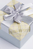Present package and garlands Stock Image