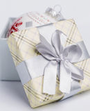 Present package and garlands Royalty Free Stock Images