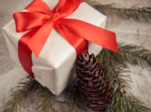 Present and pinecone Stock Images
