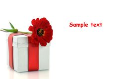 Present with red ribbon and flower Stock Photos