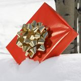 Present in snow. Royalty Free Stock Images