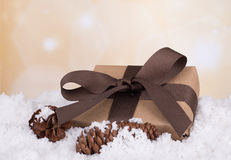 Present in Snow Stock Photography