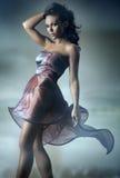 Presentación atractiva del brunette Imagen de archivo libre de regalías
