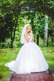 Presentación de la novia Fotografía de archivo