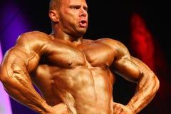 Presentación del Bodybuilder Imagen de archivo