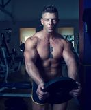 Presentación hermosa del individuo Bodybuilder Imagen de archivo