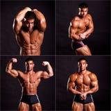 Presentación joven del bodybuilder Fotografía de archivo libre de regalías