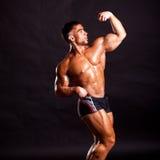 Presentación joven del bodybuilder Fotografía de archivo