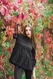 Presentación modelo hermosa en parque del otoño Imágenes de archivo libres de regalías