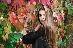 Presentación modelo hermosa en parque del otoño Imagen de archivo libre de regalías
