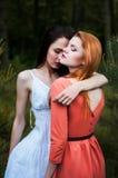 Presentación hermosa de dos muchachas Fotografía de archivo