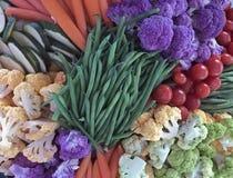 Presentation av Vegtables Royaltyfria Foton