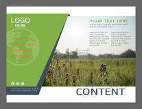 Presentation layout design for greenery cover page template, Abstract vector modern background Royalty Free Stock Photography