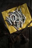 Raw anchovies in a flat scale. Presentation of the portion of raw anchovies in an old scale dish Stock Photography