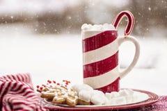 Presente a compartilhar durante o tempo do Natal Fotografia de Stock Royalty Free