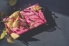 Presente cor-de-rosa fotografia de stock