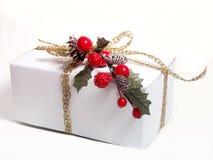 Presente de feriado Imagem de Stock Royalty Free