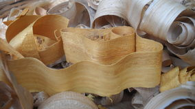 Presente de madeira da natureza fotos de stock royalty free