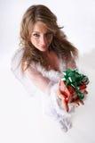 Presente de Natal Imagem de Stock Royalty Free