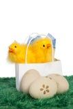 Presente de Pascua en un bolso blanco Fotografía de archivo