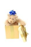 Presente dell'orso dell'orsacchiotto Immagine Stock Libera da Diritti