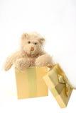 Presente dell'orso dell'orsacchiotto Immagini Stock Libere da Diritti