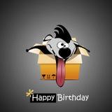 Presente do cão do feliz aniversario Imagem de Stock Royalty Free