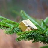 Presente do Natal na árvore de Natal Foto de Stock Royalty Free