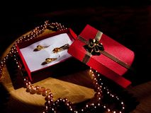 Presente dorato segreto Fotografie Stock
