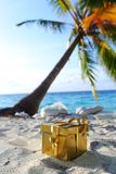 Presente dourado na praia do oceano Imagens de Stock Royalty Free