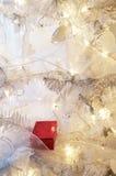 Presente en el árbol de navidad Imagen de archivo