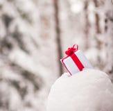 Presente en la decoración de la nieve fotografía de archivo libre de regalías