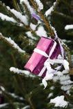 Presente en un árbol de navidad imagenes de archivo