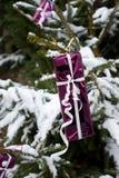 Presente en un árbol de navidad foto de archivo libre de regalías