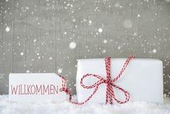 Presente, fundo com flocos de neve, boa vinda do cimento dos meios de Willkommen Fotografia de Stock Royalty Free