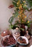 Presente la decoración de la exhibición con los conos del pino en la tabla Fotografía de archivo libre de regalías