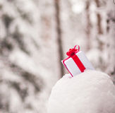 Presente na decoração da neve fotografia de stock royalty free