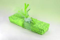 Presente que empacota no verde com mola Fotografia de Stock Royalty Free