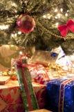 Presente sotto l'albero di Natale Immagini Stock Libere da Diritti
