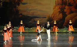 Presented flowers to prince buffoon -ballet Swan Lake Stock Photos