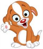 Presenter puppy Stock Photo