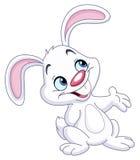 presentera för kanin
