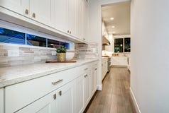 Presenterar den våta stången för vitt kök vita moderna kabinetter arkivbild