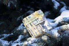 Presentes de ano novo do dinheiro fotos de stock