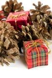 Presentes de Natal e cones da árvore, no branco Fotos de Stock Royalty Free