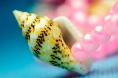 Presentes do mar. Imagem de Stock Royalty Free