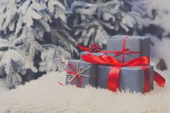 Presentes do Natal no fundo borrado da árvore de abeto, conceito do feriado Imagens de Stock Royalty Free
