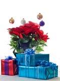 Presentes em torno de uma planta do Poinsettia Fotos de Stock Royalty Free